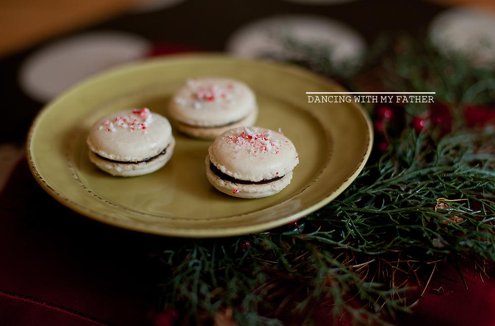 peppermint dark chocolate macarons dwmfb