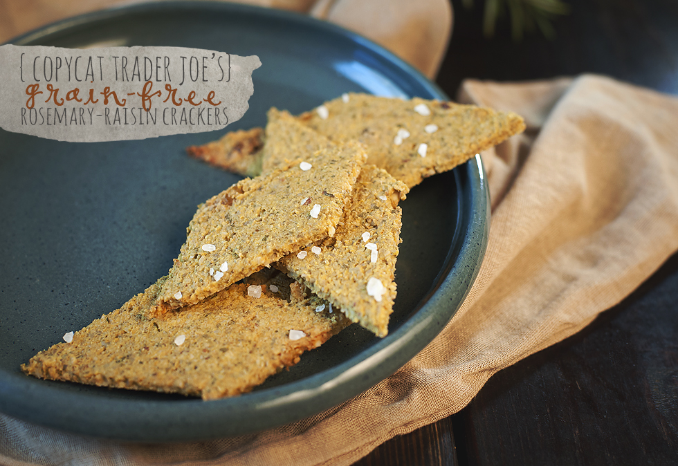 paleo_raisin_crackers_angela_sackett