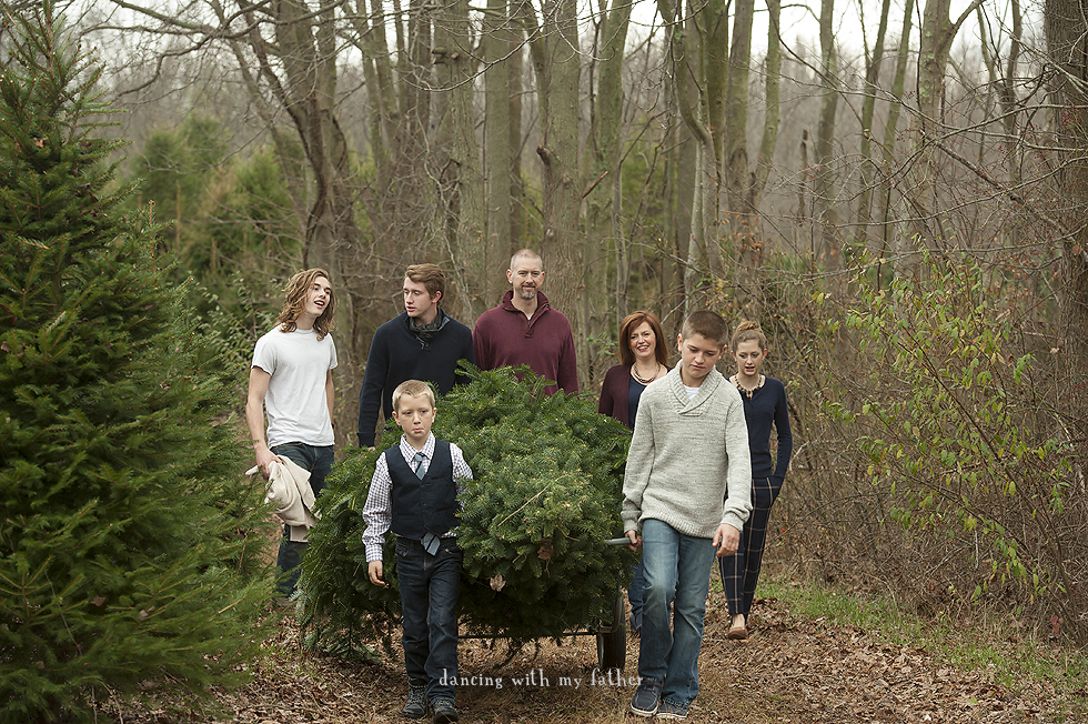 cutting_christmas_trees_2015