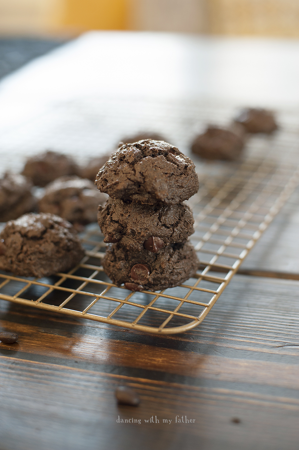 paleo_breakfast_cookies_1